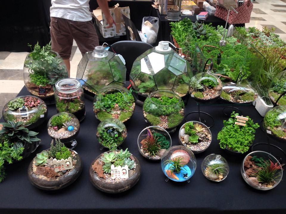 Way To Make A Terrarium Flower Garden For Your Home